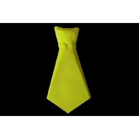 Corbata Ancha Neón  Paquete x12 Colores Surtidos