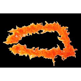 Boa Naranja  Plumas