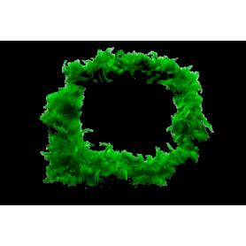 Boa Verde en Plumas