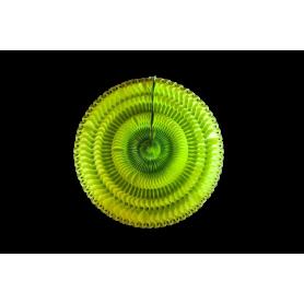 Espiral Girasol Fondo Entero Verde Manzana